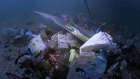 Mer de plastique - National Geographic - 50'