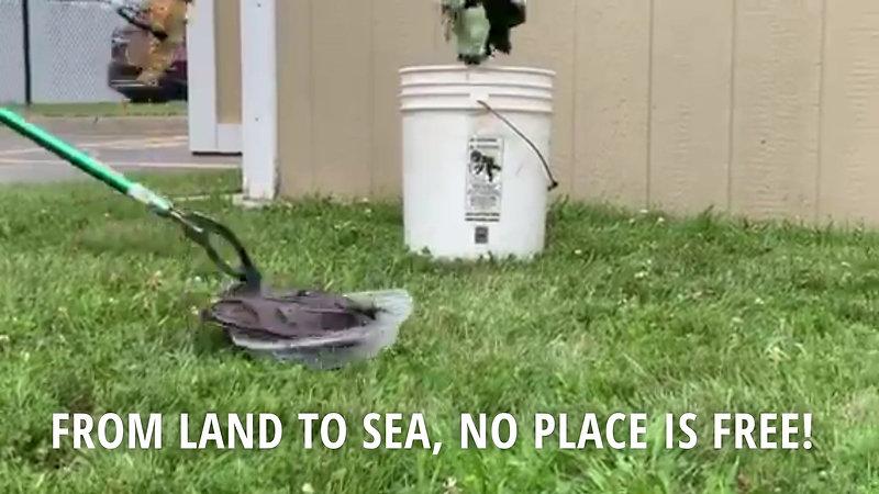 Trashformers Intro