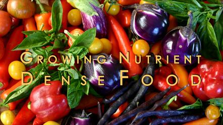 Introducing the Growing Nutrient-Dense Food Workshop