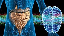 Tratamento de Parkinson com Hidrogênio