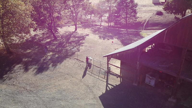 Benson Ranch Bonavento