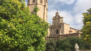 A Valencian Experience