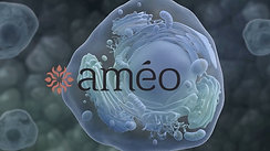 Ameo Oil Cell Animation