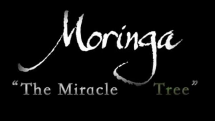 """The Miracle Tree"" Moringa Documentary (English subtitles)"