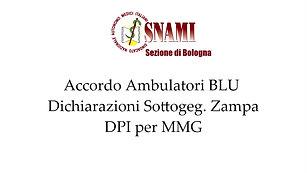 Ambulatori BLU, Dichiarazioni del sottosegretario Zampa e DPI MMG