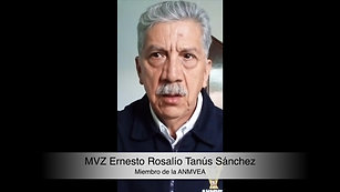 Ernesto Tanús