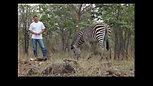 Walking the Walk in Zambia