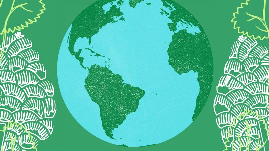 World_Environment_Day_2021