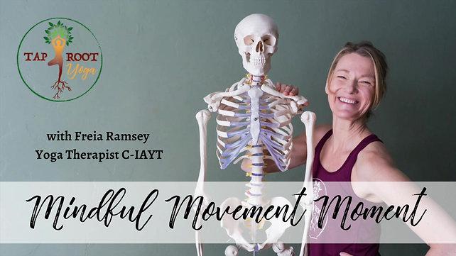 Mindful Movement Moments