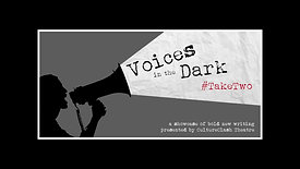 Voices In The Dark 2020 #TakeTwo [Part 2]