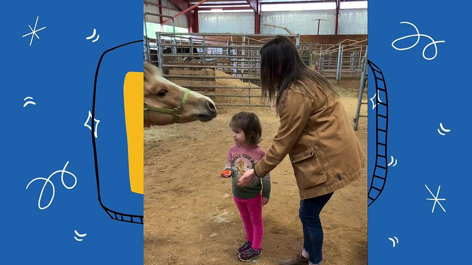 HorsePlay Videos
