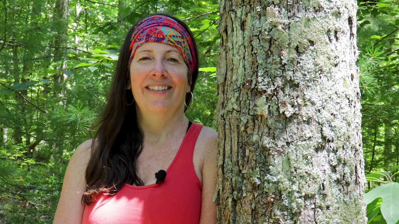 A Message from Sacred Tree Yoga