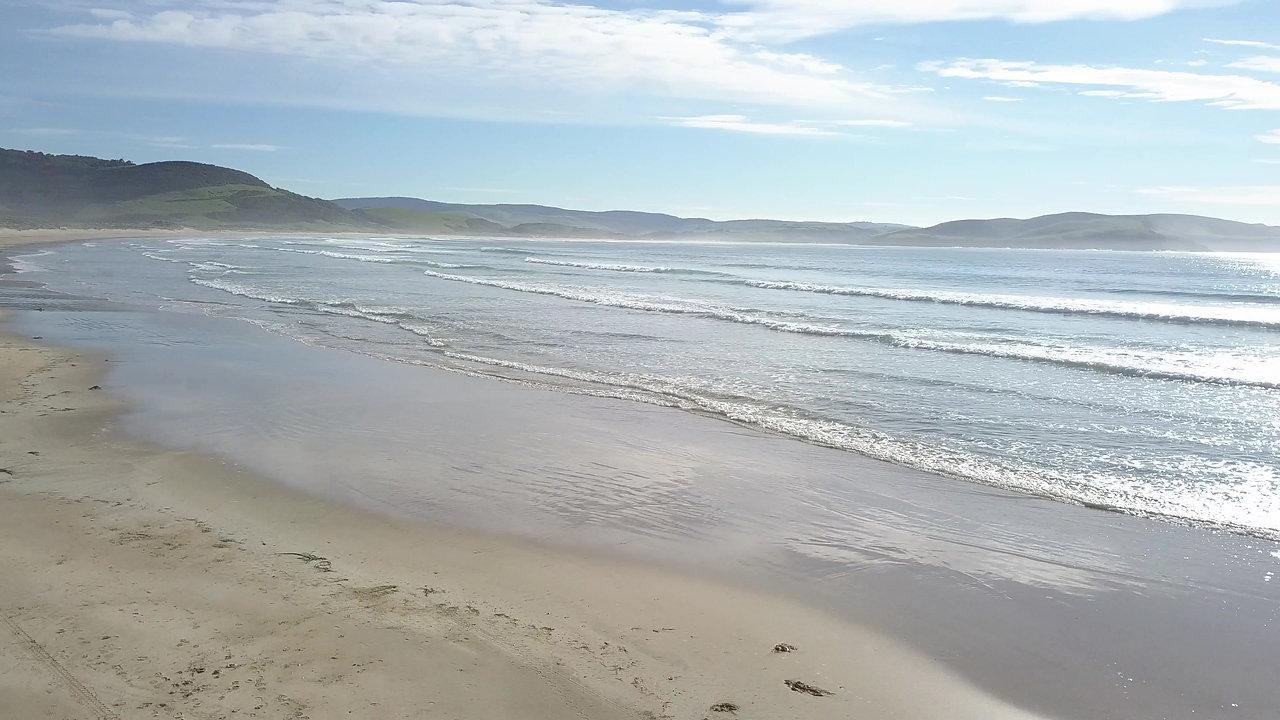 Coastal Science & Policy Program Application