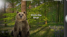 Click The Bear