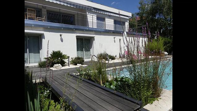 Aménagement d'une terrasse plein sud : piscine, bassin, pergola et palmiers exotiques