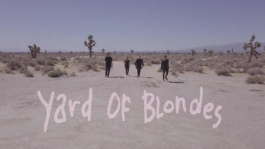 Yard Of Blondes Videos
