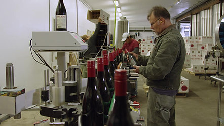 Elk Cove Winery