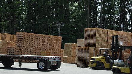 Shadybrook Lumber