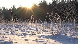 14_Sniegpārsla