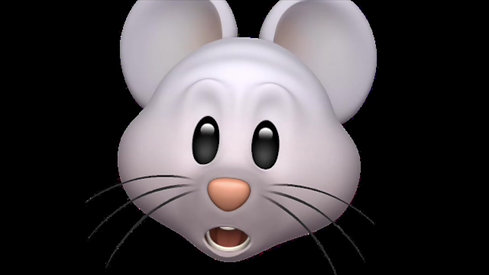 Mouse Don