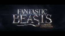 Fantastic Beasts & Where to Find them: Promo