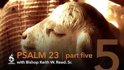 """Psalm 23"" pt 5"