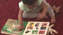 Toddler reading story