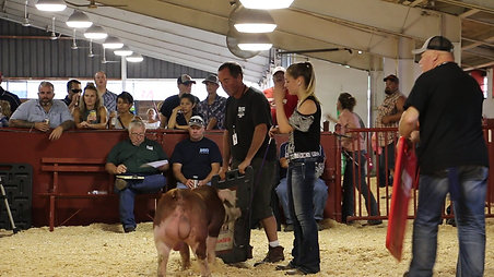 He-Man Wins Grand Champ Hereford Boar at WI State Fair