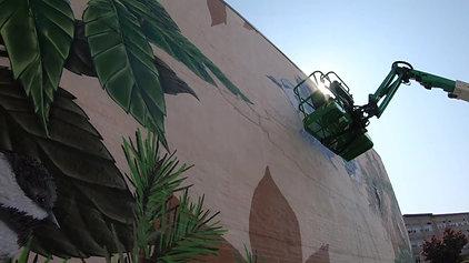 News Center MAINE - Lewiston bird mural full story