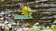 Leaf Boats