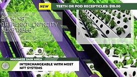 Teeth or pod recepticles