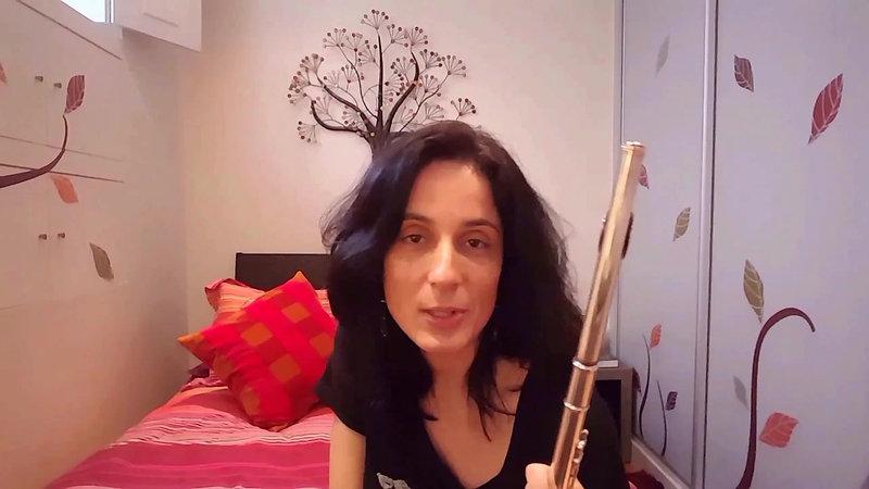 Flauta Transversal | Construção e Inic. Instrumental