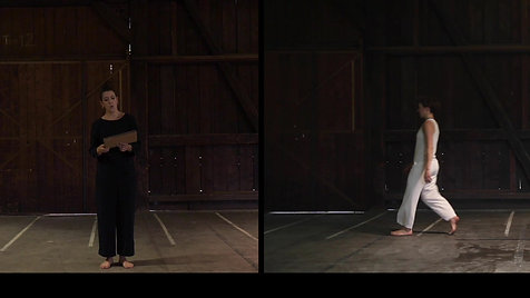 "Ausschnitt ""Sequenza III"" Luciano Berio"