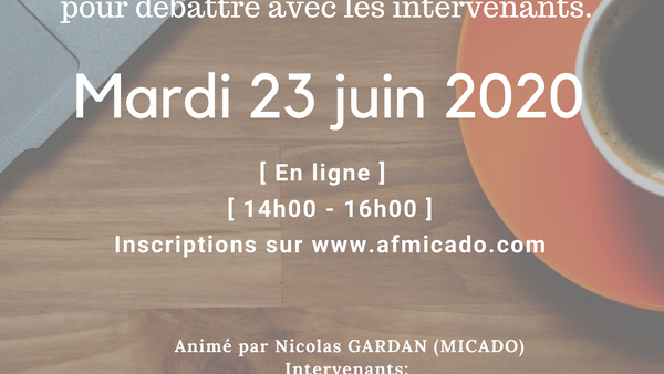 atelier-solution-outils-meshless-replay-2020-06-23