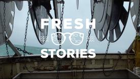 U - Fresh Stories