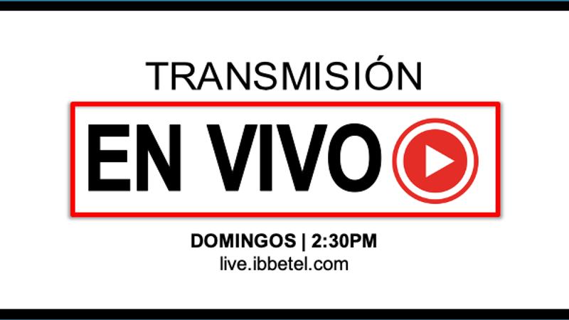 Live | En vivo