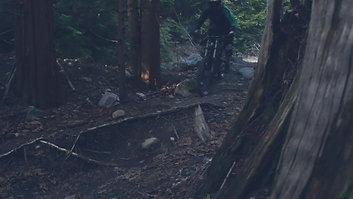 Cove Bikes // Caleb Harapnuik