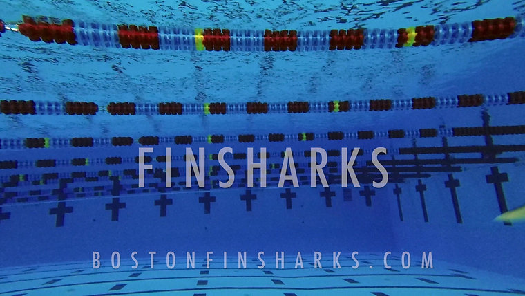 What is Boston Finsharks?