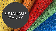 Sustainable Galaxy