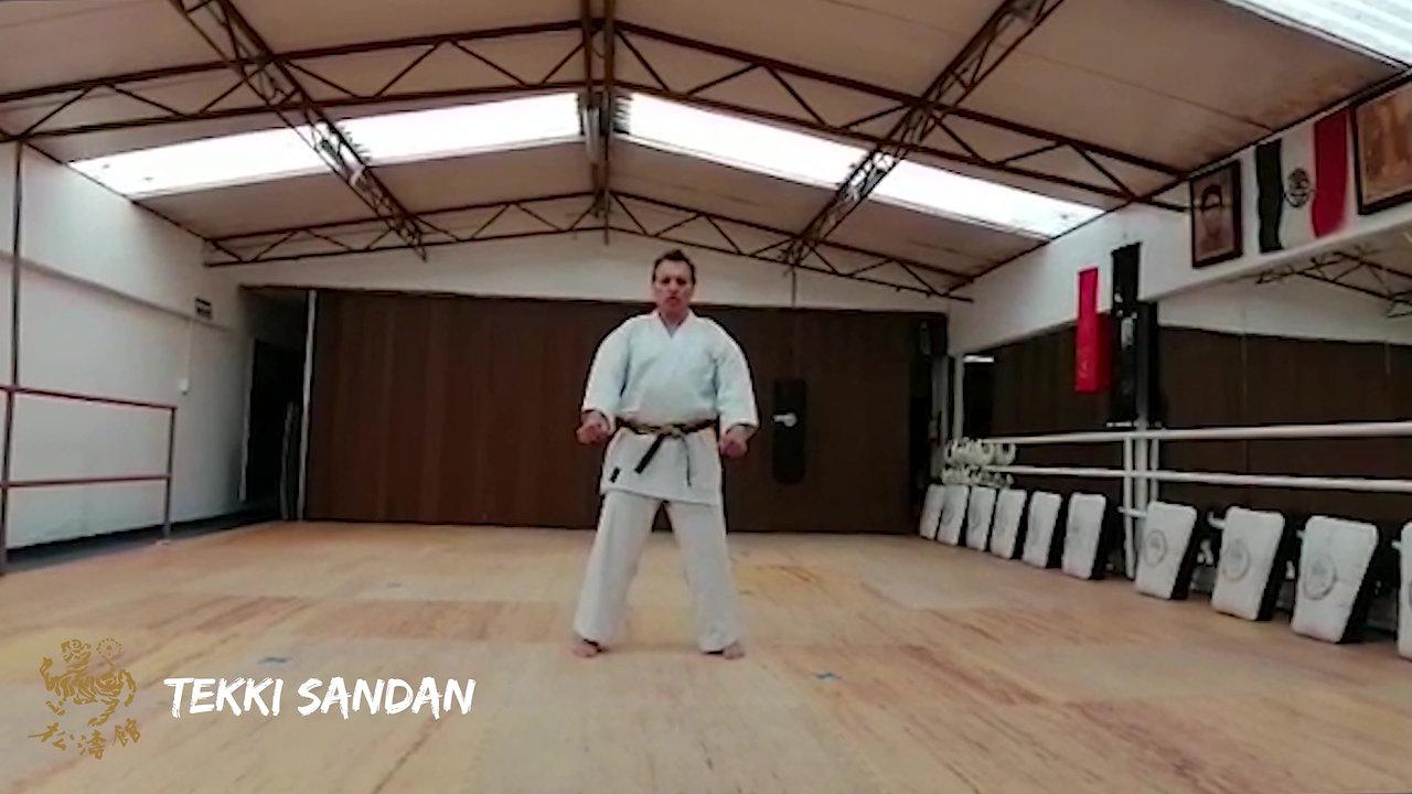 Shotokan Ryu Kase Ha México