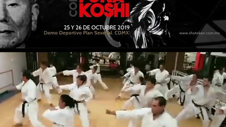 Rumbo a la XXXI Copa Funakoshi 2019