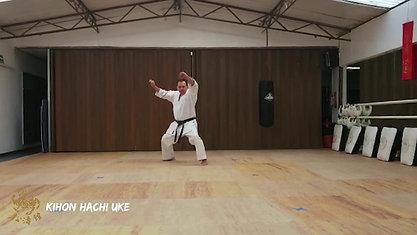 Kihon Hachi Uke Tsuki Waza