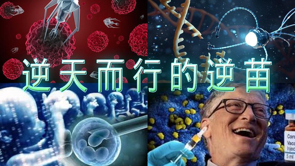 逆天而行的逆苗 基因改造 納米晶片 5G 人口滅絕 思想操控