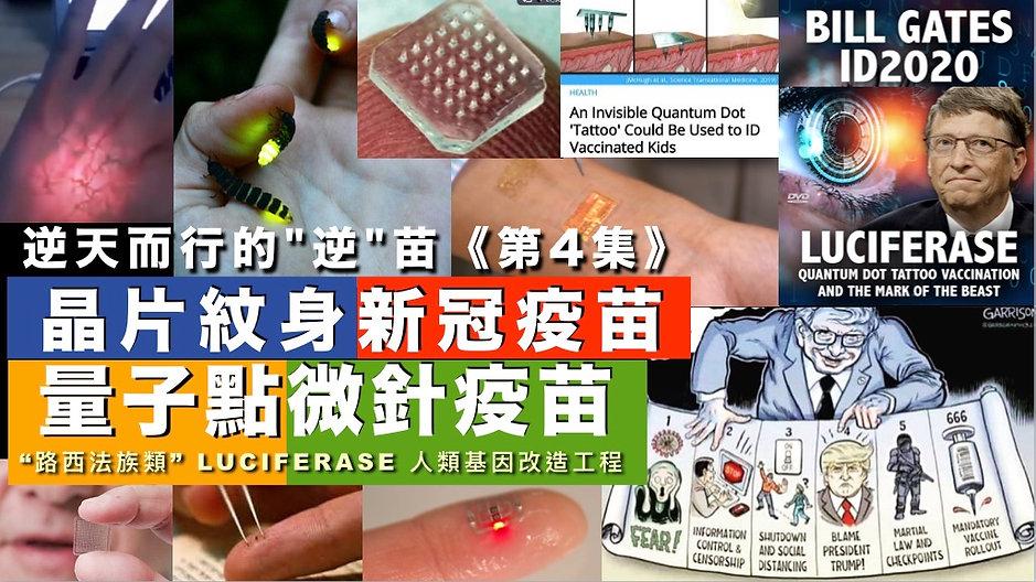 量子點微針疫苗|666獸印晶片|啟示錄預言