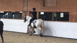 Riding Lesson - Trotting