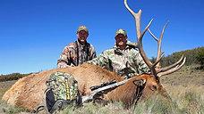 Ssgt. Ian Newland's Elk Hunt - 2013