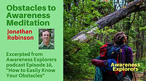 Obstacles to Awareness Meditation - from Awareness Explorers Episode 10