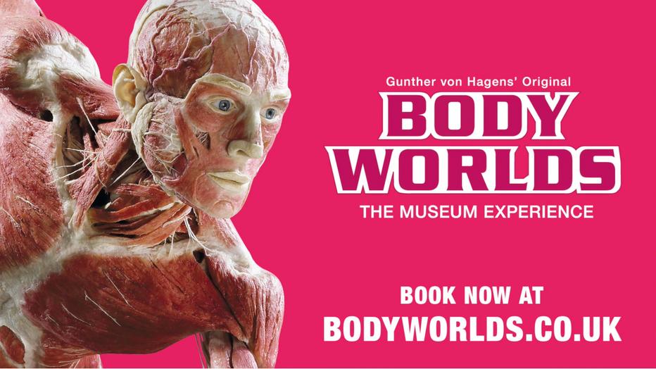 BODY WORLDS Installation shoot