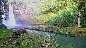 Waterfall Drive - Kauai