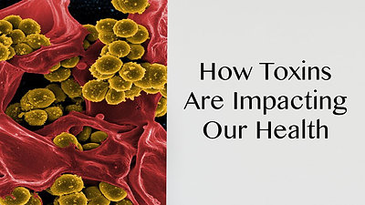 How Toxins Are Impacting Our Health